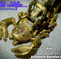 Blessing buddha Autoerotic Scorpion King by Phra Arjarn O, Petchabun